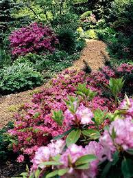 Small Picture 89 best Shady garden images on Pinterest Garden ideas Shaded