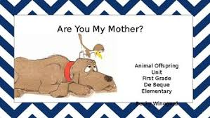 First Grade Science Animals Unit Offspring By Winegards World Tpt
