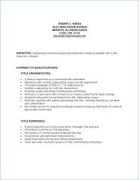 Good Resume Titles Cool Good Resume Titles Igniteresumes