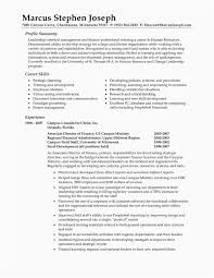 What To Put In Professional Profile On Resume Professional Profile Resume Unique Profile Section Resume Examples