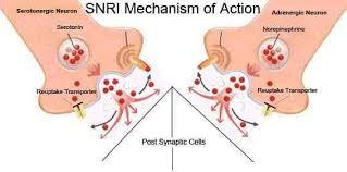 Snri Comparison Chart Tag Snri Side Effects Comparison Chart Dr Linex