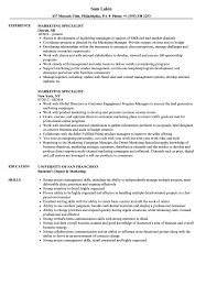 It Specialist Resume Examples Marketing Specialist Resume Samples Velvet Jobs 15