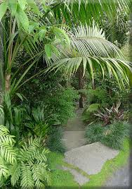 Small Picture 387 best tropical landscaping ideas images on Pinterest Tropical