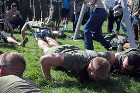 Build Muscle With Trx Suspension Training Military Com