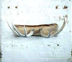 antler decor ideas decoration antlers modern with deer plans 8