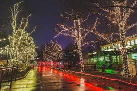 Toledo Lights Before Christmas Coupons Toledo Zoo Lights Before Christmas Pictures