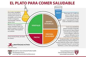food plate in spanish. Perfect Food Healthy Eating Plate Spanish Translation With Food In