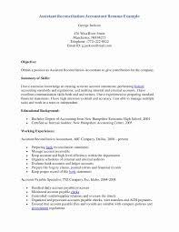 Standard Resume Format For Accountant Resume Online Builder