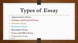 type of essay and examples co type