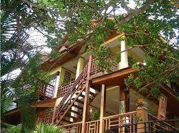 Fotos Bamboo Bungalows U2013 Thong Nai Pan Yai U2013 Koh Phangan  Koh Treehouse Koh Phangan
