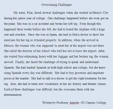 sample of a  paragraph essay  illustration paragraph example  illustration paragraph example