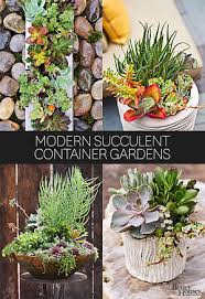 Small Picture Container Garden Recipes for Shade