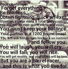 Racing Quotes 99 Inspiration Barrel Racing Quotes And Sayings 24 Madmels