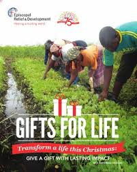 gifts for life transform a life this give a gift with lasting impact 2016 catalog