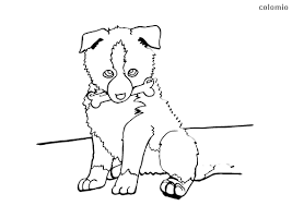 To print the coloring page Dogs Coloring Pages Free Printable Dog Coloring Sheets