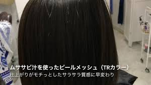 メッシュ 髪 カラー アッシュ痛まないトリートメント ピールメッシュ と