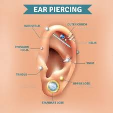 Ear Piercing Chart Top Different Types Of Ear Piercing Trendy Positions Picture