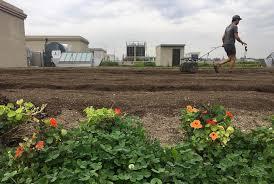largest rooftop farm points