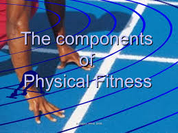 The Components Of Fitness Powerpoint