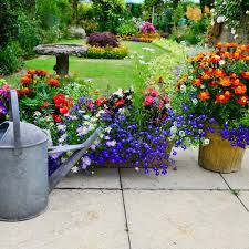 patio garden flower pots