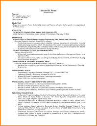 6 Professional Summary For Resume No Work Experience The