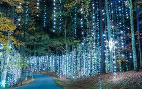 Columbus cafe outdoor lighting Backyard Gfilsnowflakes Big Lots Fantasy In Lights Christmas At Callaway Callaway Resort Gardens
