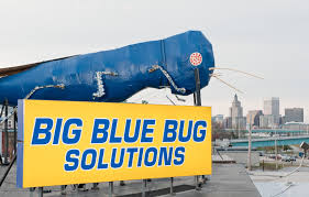 Big Blue Bug Solutions The Big Bug With The New Big Blue Bug Solutions Sign The Big Blue