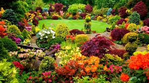 Small Picture Ideas for Gardens Designs YouTube