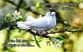 Telugu Love Stock Images