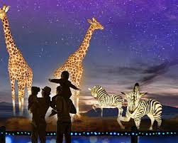 WildLights is an annual, signature event of The Living Desert Zoo and  Gardens. | Holiday lights, Garden, Vacation