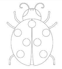 Imprimer Animaux Insectes Coccinelle Num Ro 64633