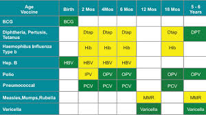 Vaccination Chart In Uae 5 Things To Know About Vaccinations In Dubai