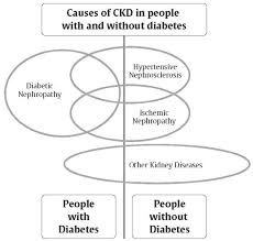 Diet Chart For Diabetic And Kidney Patient Diabetes Canada Clinical Practice Guidelines Chapter 29