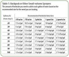 16 Best Conversion Chart Images Chart Dry Measuring Cups