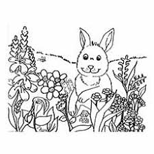 Free Coloring Pages For Spring Flowers Spring Coloring Pages 05