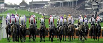 Image result for Pic of Cheltenham Racecourse