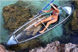 Transparent Canoe Kayak Molokini All Transparent Kayak Allows You To See Dolphins Below