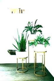 corner plant stand home depot brilliant incredible wooden outdoor