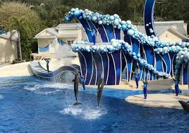 busch gardens tampa vacation packages. free family trip 2 adults kids to seaworld orlando \u0026 busch gardens tampa florida vacation packages s