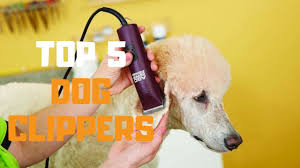 Andis Poodle Chart Best Dog Clippers In 2019 Top 5 Dog Clippers Review