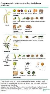 Pollen Food Allergy Chart Allergen Cross Reactivity Table Modern Coffee Tables And