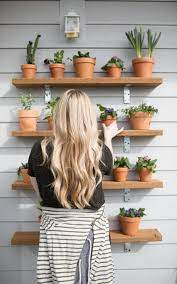 plant wall outdoor plant shelves