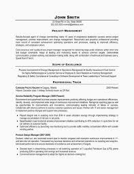 Project Manager Resume Sample Doc Resume Cv Cover Letter Project