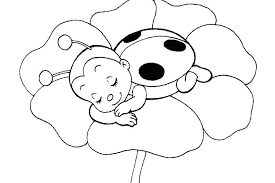 Lady Bug Coloring Sheet Ladybug Coloring Wanderlive Co