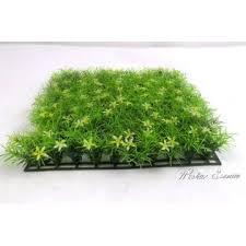 artificial boxwood grass mat china artificial boxwood grass mat