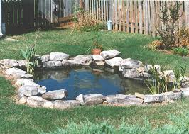 Small Pond Designs  Small Pond  Party Tips  Pinterest  Pond Small Ponds In Backyard