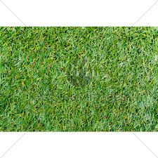 fake grass texture. Texture Of Plastic Grass On Artificial Turf Fake
