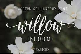 browse more than 3 800 calligraphy fonts creative market