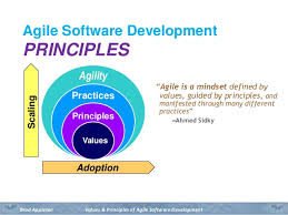 Agile Software Development Principles Patterns And Practices The Values And Principles Of Agile Software Development