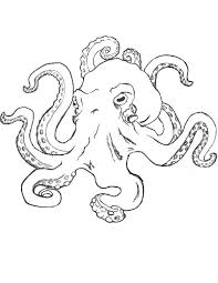 Small Picture Easy Way To Draw A Realistic Octopus Coloring Coloring Pages
